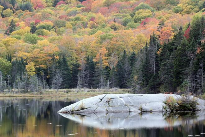 Idyllic scene in the White Mountains of New Hampshire. 2020 (C) Chris Charlesworth